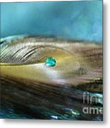 Mysterious Turquoise Metal Print