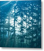 Mystic Light Metal Print