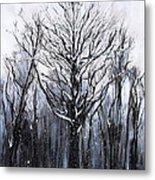 Mystic Winter Metal Print