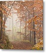 Mystic Woods Metal Print