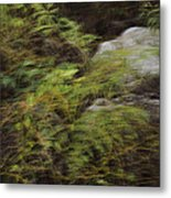 Mystical Forest Metal Print