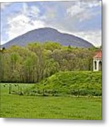 Nacoochee Indian Mound Metal Print