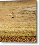 Namibian Desert Scene 1 Metal Print