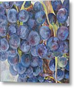 Napa Grapes 1 Metal Print by Nick Vogel