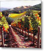 Napa Hill Side Vineyard Metal Print