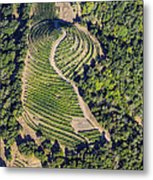 Napa Valley From Above Metal Print