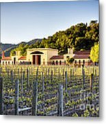 Napa Valley Spring Sunset Metal Print