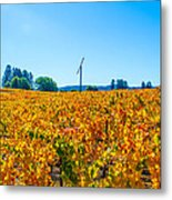 Napa Wine Capital Metal Print