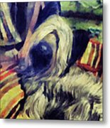 Naptime In The Library  Metal Print