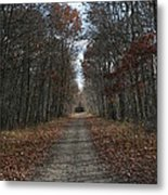 Narrow Path On Recovery Road Metal Print