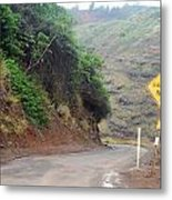 Narrow Road - North Maui Metal Print