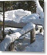 Narrow Trail Metal Print