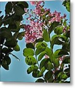Nashville Flowers Metal Print
