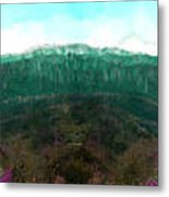 National Forest Metal Print