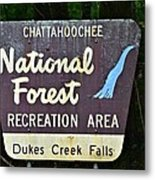 National Forest Recreation Area Metal Print