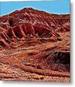 National Navajo Tribal Park Metal Print