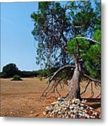 National Park Islands Of Brijuni Metal Print