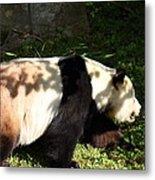National Zoo - Panda - 011328 Metal Print