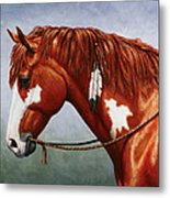 Native American Pinto Horse Metal Print