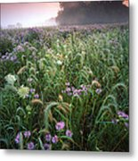 Native Prairie Sunrise Metal Print by Ray Mathis