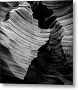 Natural Beauty Of Antelope - Black And White Metal Print