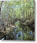 Natural Bridge Springs Metal Print