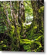 Natural Emeralds. I Wicklow. Ireland Metal Print