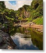 Natural Pool - The Beautiful Scene Of The Seven Sacred Pools Of Maui. Metal Print