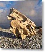 Naturally Sculpted Waterworn Wood On Pebble Beach Metal Print