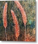 Nature Abstract 15 Metal Print