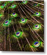 Nature Abstracts Metal Print