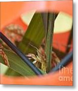 Nature Always Finds A Way Metal Print