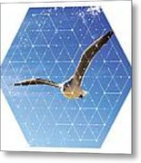 Nature And Geometry - The Seagull Metal Print