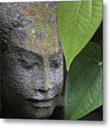 Nature Cambodia Siem Reap 03 Metal Print