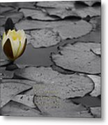 Nature Does Not Hurry Waterlily Metal Print