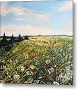 Nature Landscape Field Poppies Daises Grass Pines Original Art  Metal Print by Drinka Mercep