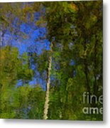Nature Reflecting Metal Print