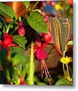 Nature Showing Off Metal Print by Donald Torgerson
