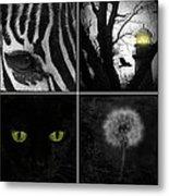 Nature Squares - Collage Metal Print