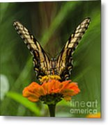 Nature Stain Glass Metal Print