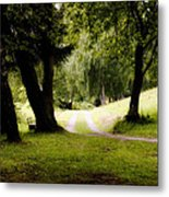 Nature Wonderland Metal Print