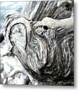 Natures Art Metal Print