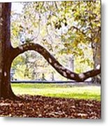 Nature's Bench Metal Print