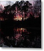 Natures Canvas Metal Print by Ella Char