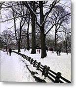 Nature's Canvas On A Wintry Day Metal Print