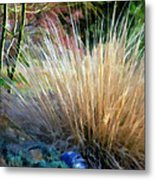 Nature's Desert Abstract Metal Print