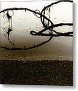 Natures Edge Metal Print