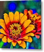 Natures Eye Candy Metal Print by Rebecca Adams