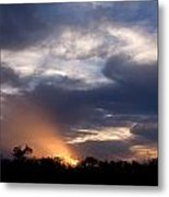 Nature's Flashlight Metal Print by Kelly Kitchens