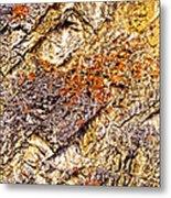Natures Gold Metal Print